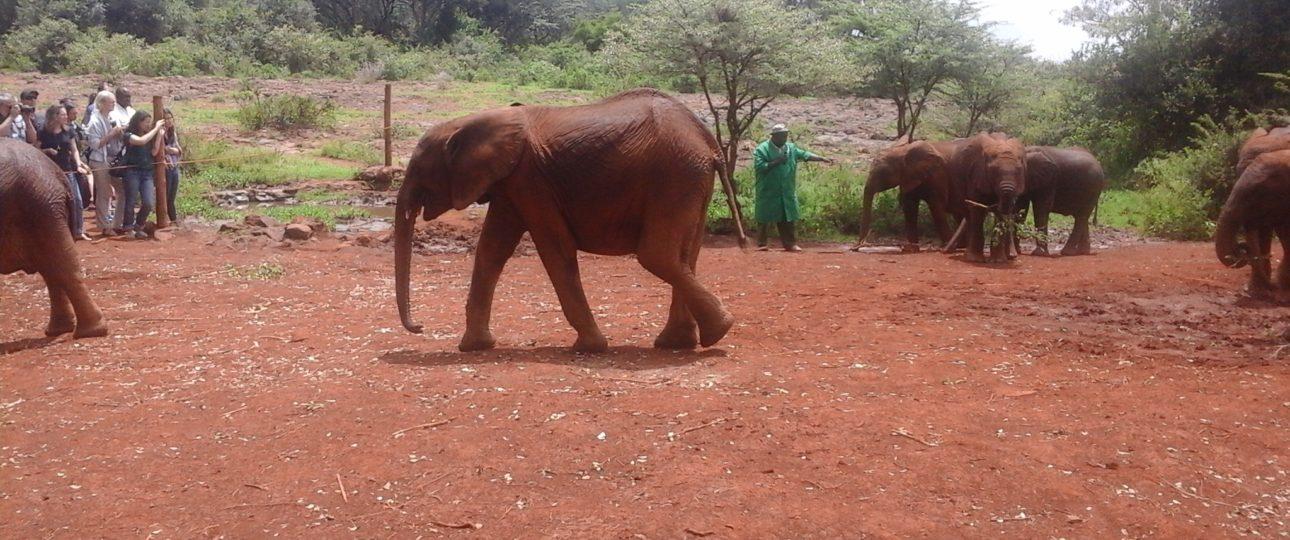Kenya tourist attraction sites